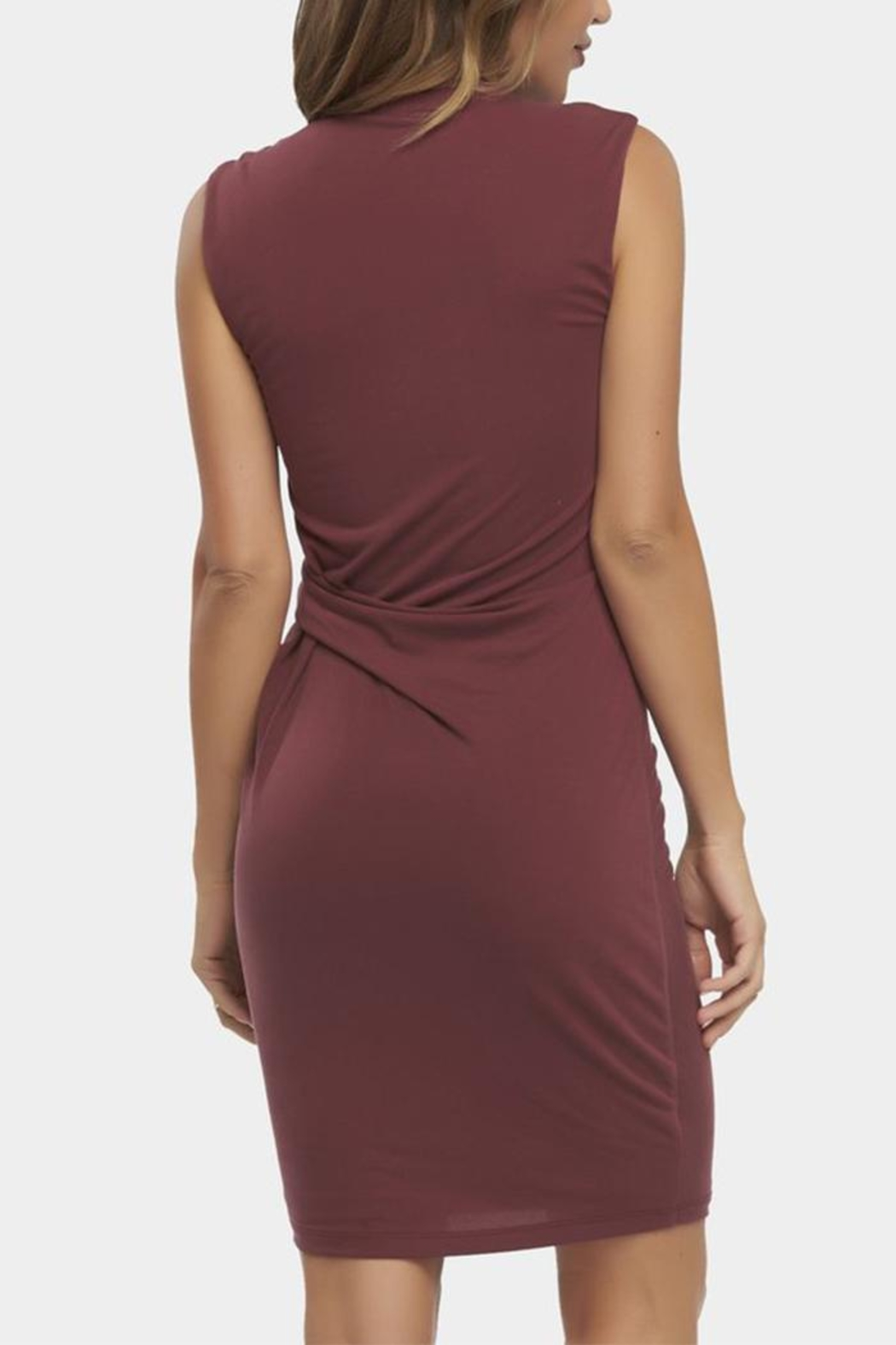 Tart Collections Annetta Dress - Back Cropped Image