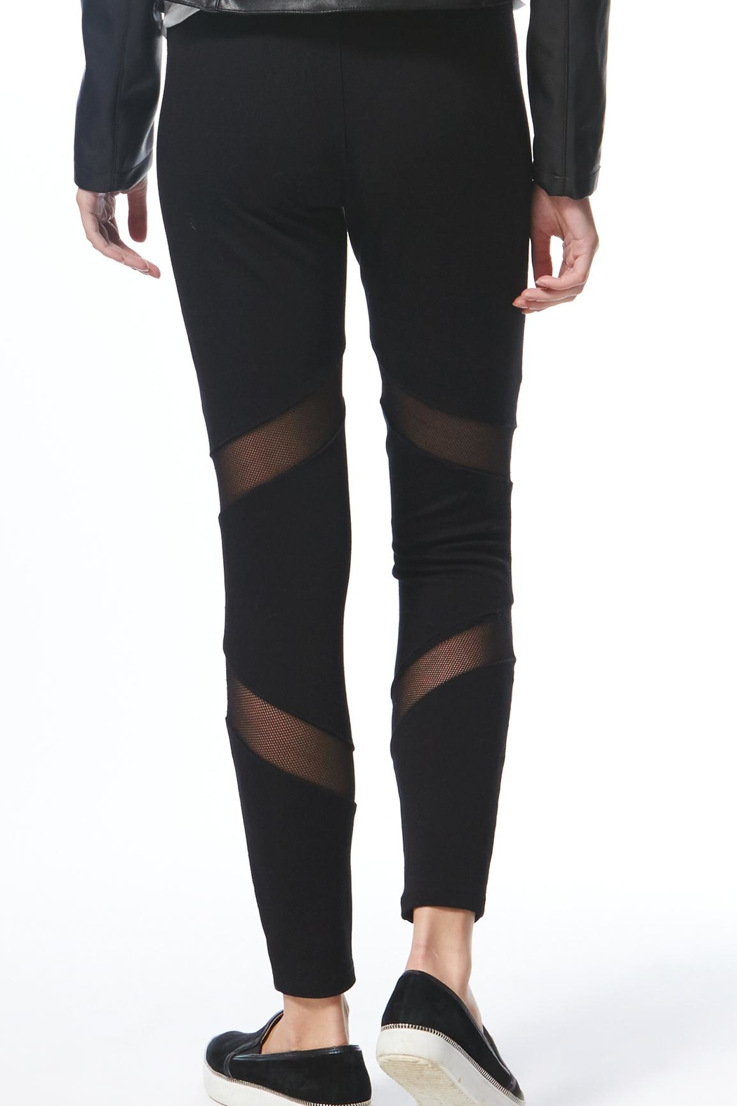 Tart Collections Nash Pant Leggings - Front Full Image