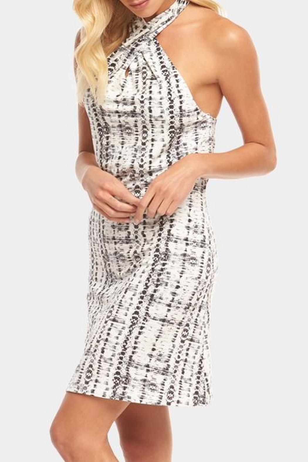 Tart Collections Rumi Dress - Side Cropped Image
