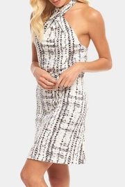 Tart Collections Rumi Dress - Side cropped