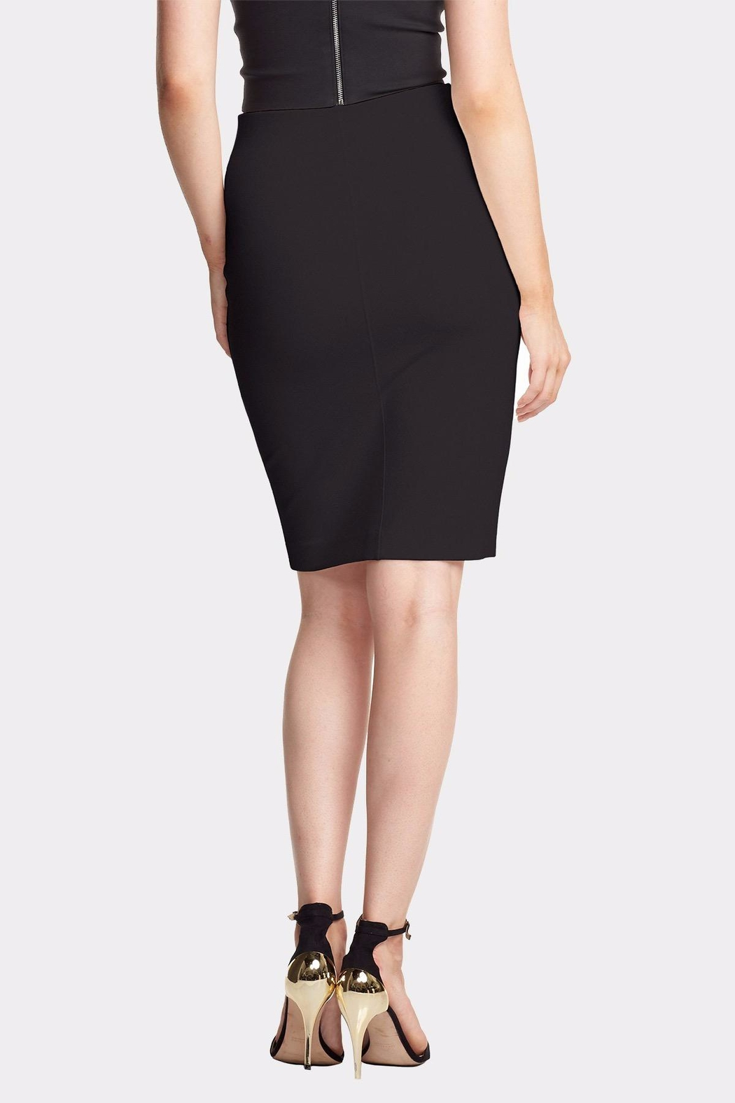 Tart Collections Tracy Ponte Skirt - Front Full Image