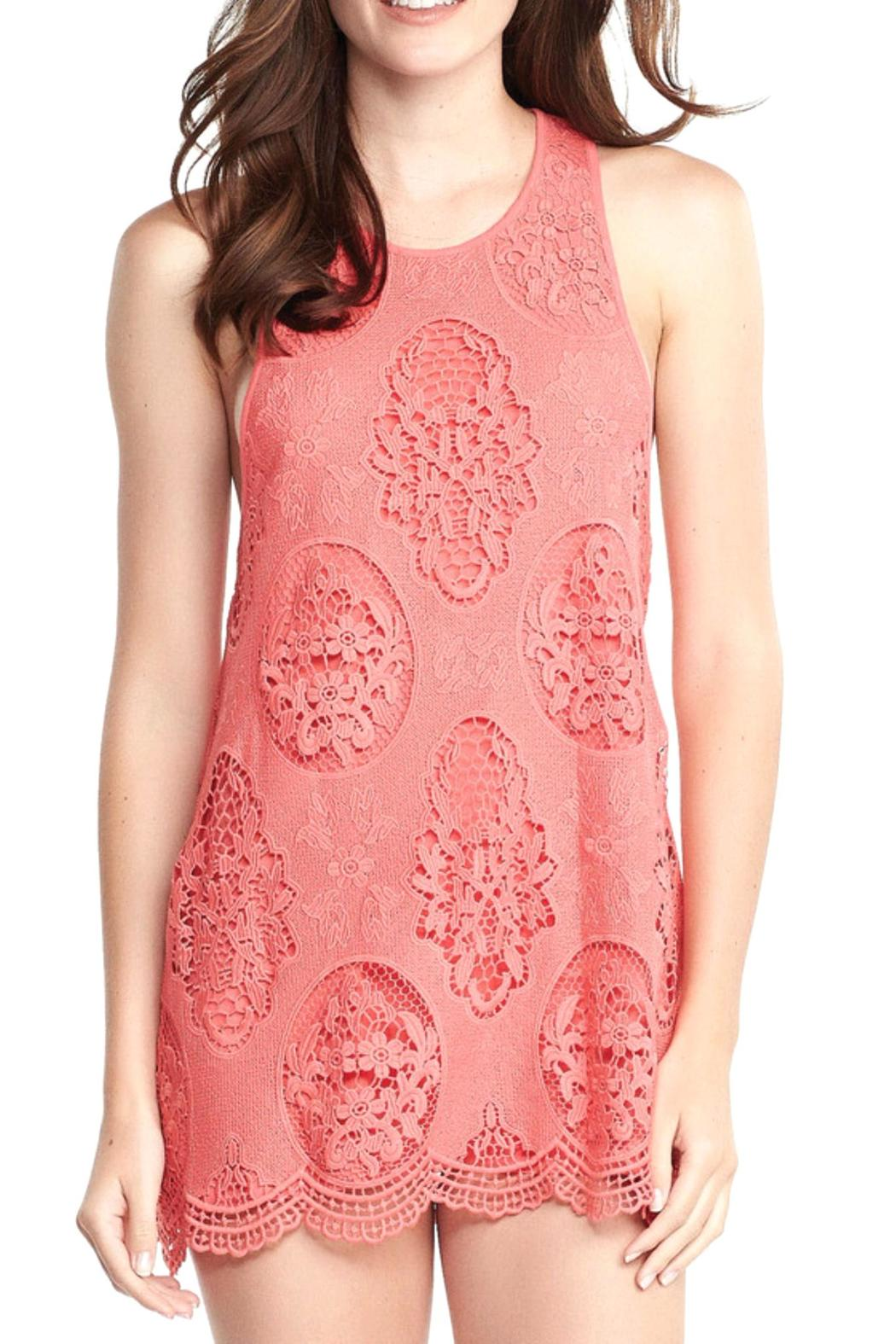 Tart Collections Willow Lace Dress - Main Image
