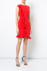 Nicole Miller Tatum Ruffle Dress - Product Mini Image