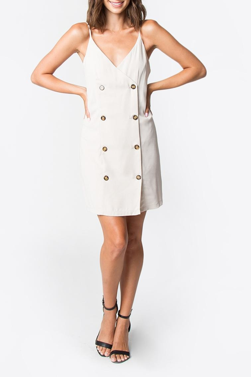 Sugarlips Taupe Button-Down Dress - Back Cropped Image