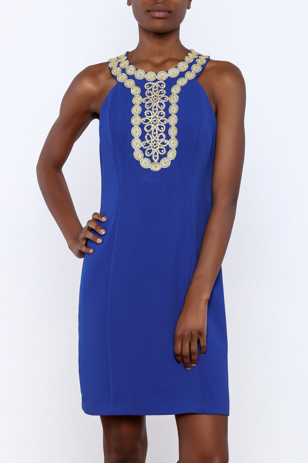 Taylor Embellished Dress - Front Cropped Image