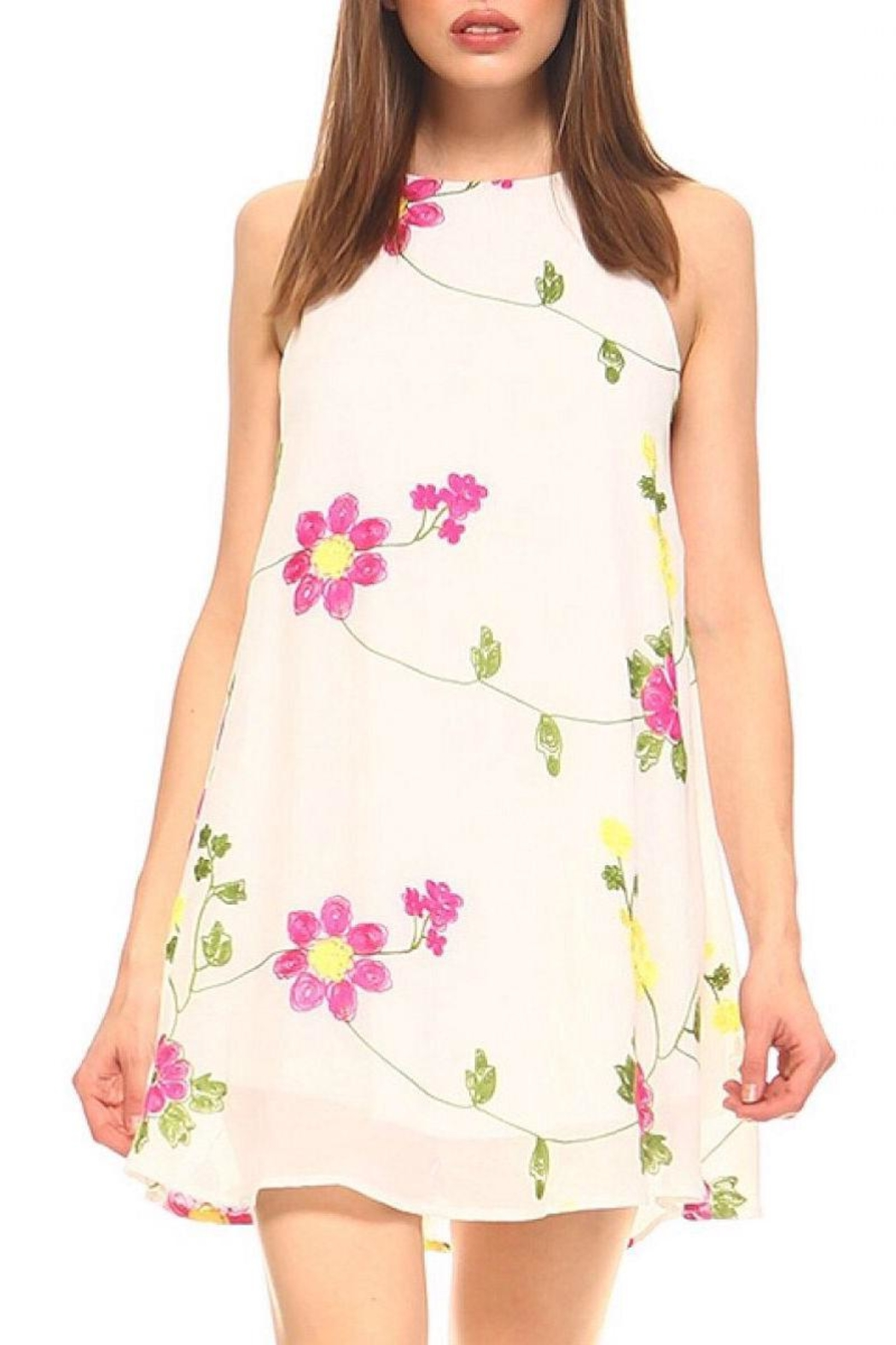 TCEC Embroidered Swing Dress - Main Image