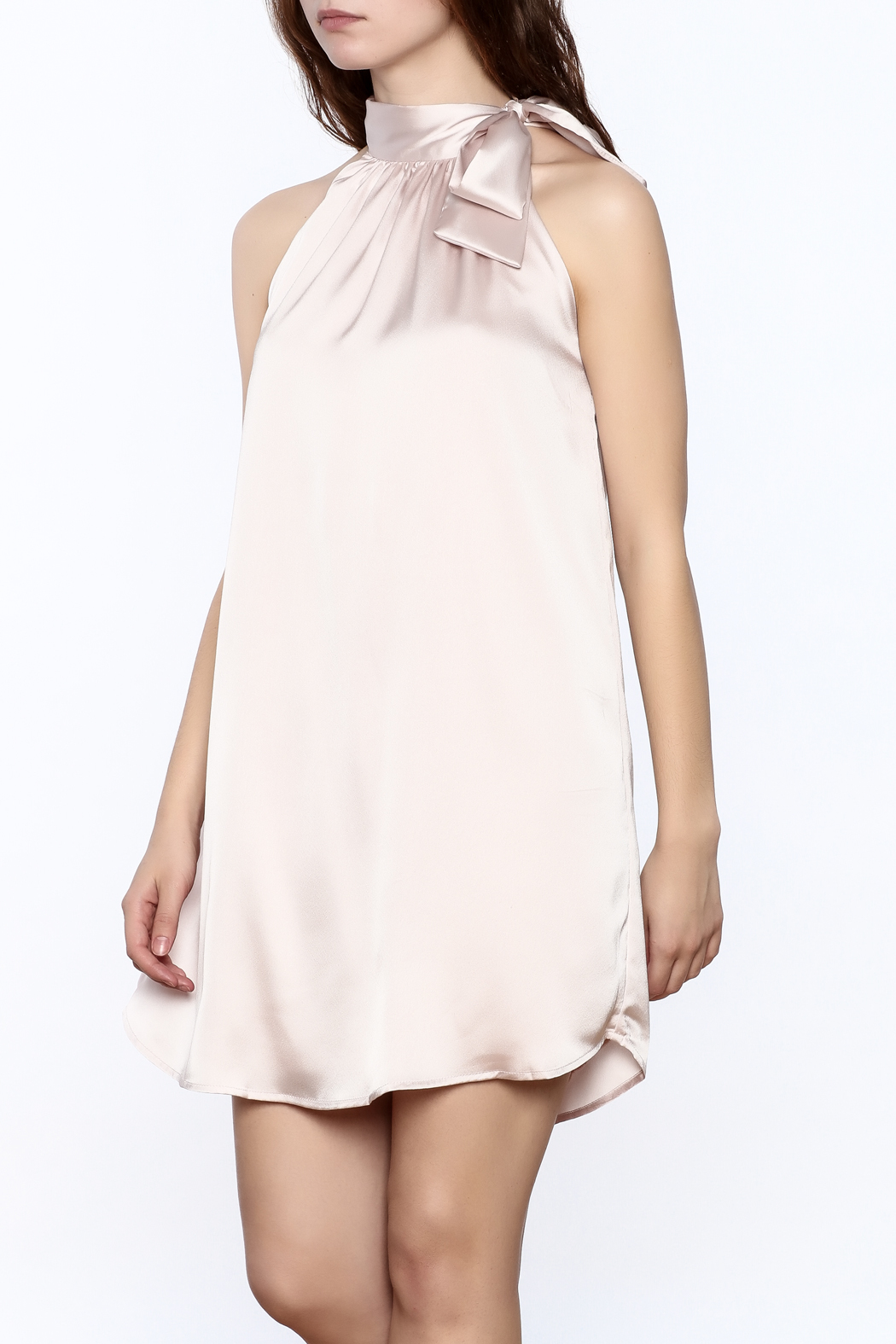 TCEC Satin Swing Dress - Front Cropped Image