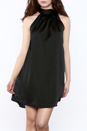 TCEC Satin Swing Dress - Product Mini Image