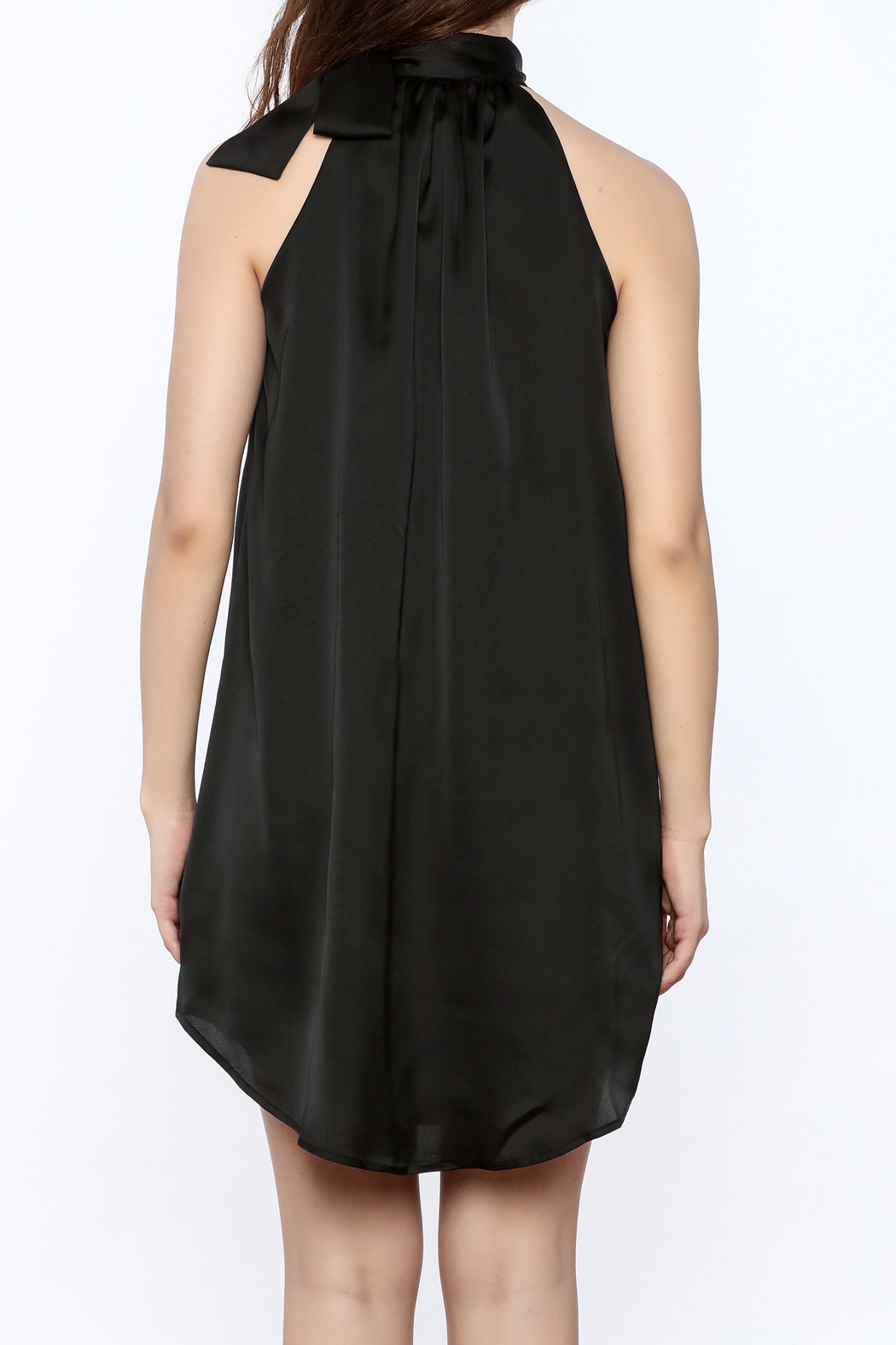 TCEC Satin Swing Dress - Back Cropped Image