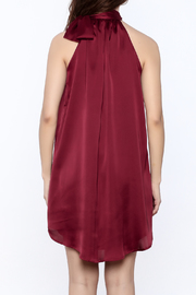 TCEC Satin Swing Dress - Back cropped