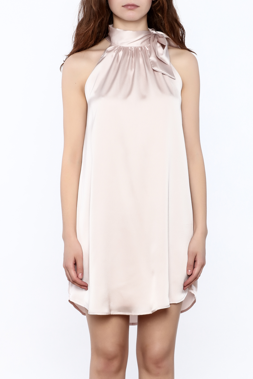 TCEC Satin Swing Dress - Side Cropped Image