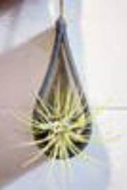 Mud & Maker - Faire Teardrop Air Plant Holder - Product Mini Image