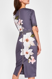 Ted Baker Bisslee Dress - Front full body