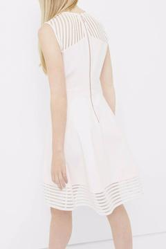 Shoptiques Product: Blush Skater Dress