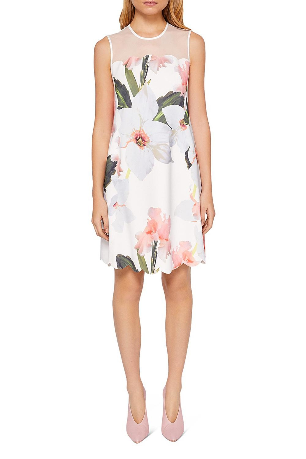 Ted Baker Caprilla Dress From Wallingford By The Dressing Room