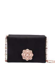 Ted Baker Embellished Crossbody Bag - Product Mini Image