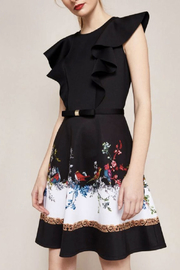 Ted Baker Fit-And-Flare Dress - Front cropped
