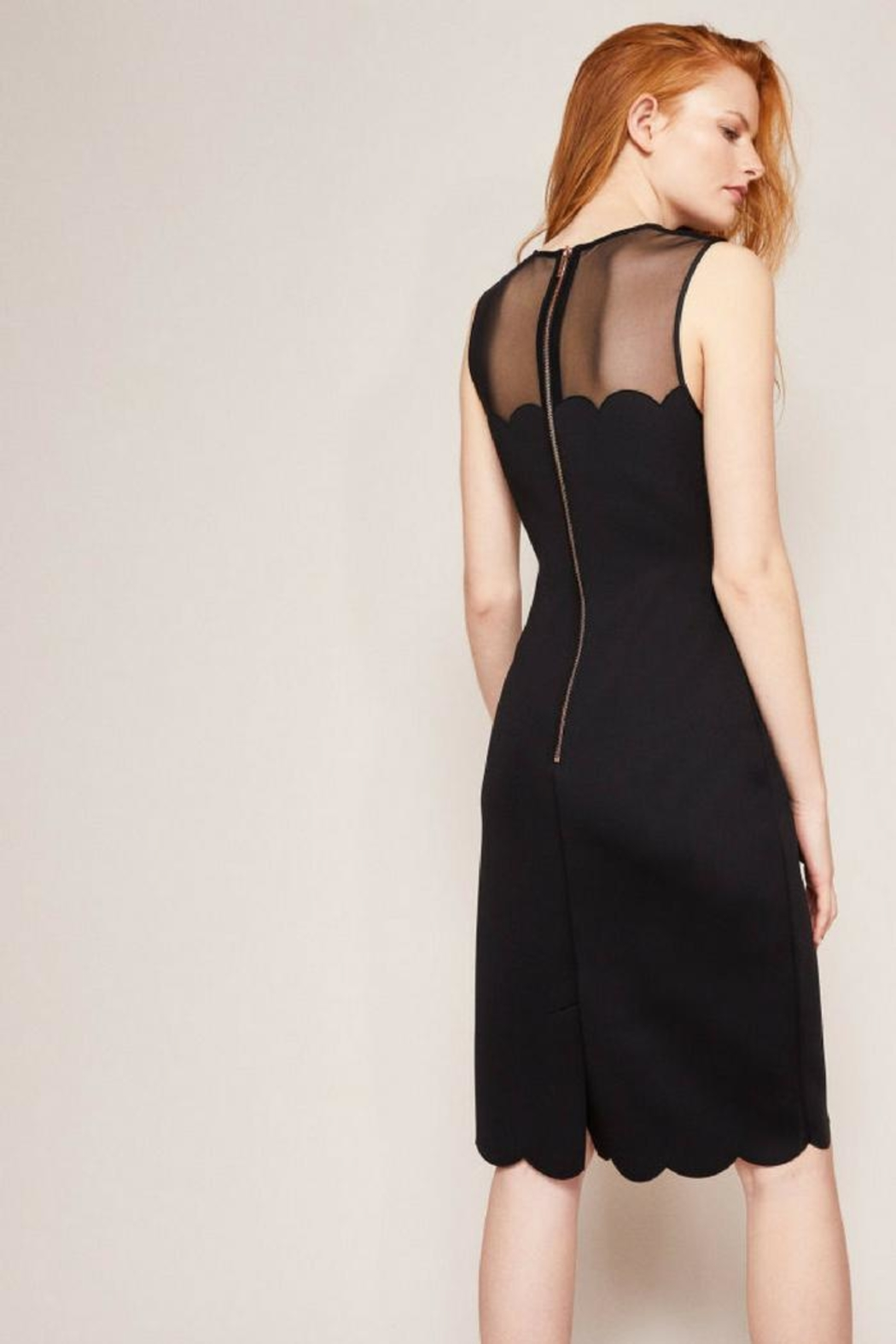 Ted Baker Fitted Midi Dress - Front Full Image
