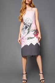 Ted Baker Floral Scalloped Dress - Front full body