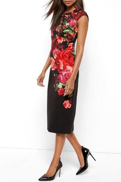 Ted Baker Mirrie Dress - Product List Image