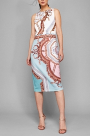 Ted Baker Versailles Printed Dress - Product Mini Image