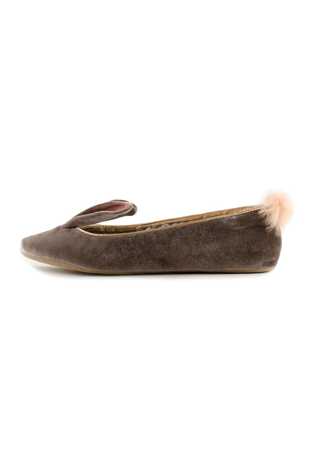 Ted Baker London Bellamo Flat - Front Cropped Image