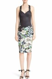 Ted Baker London Jayer Sheath Dress - Product Mini Image
