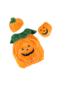 Teddy Mountain Teddy Pumpkin Outfit - Alternate List Image