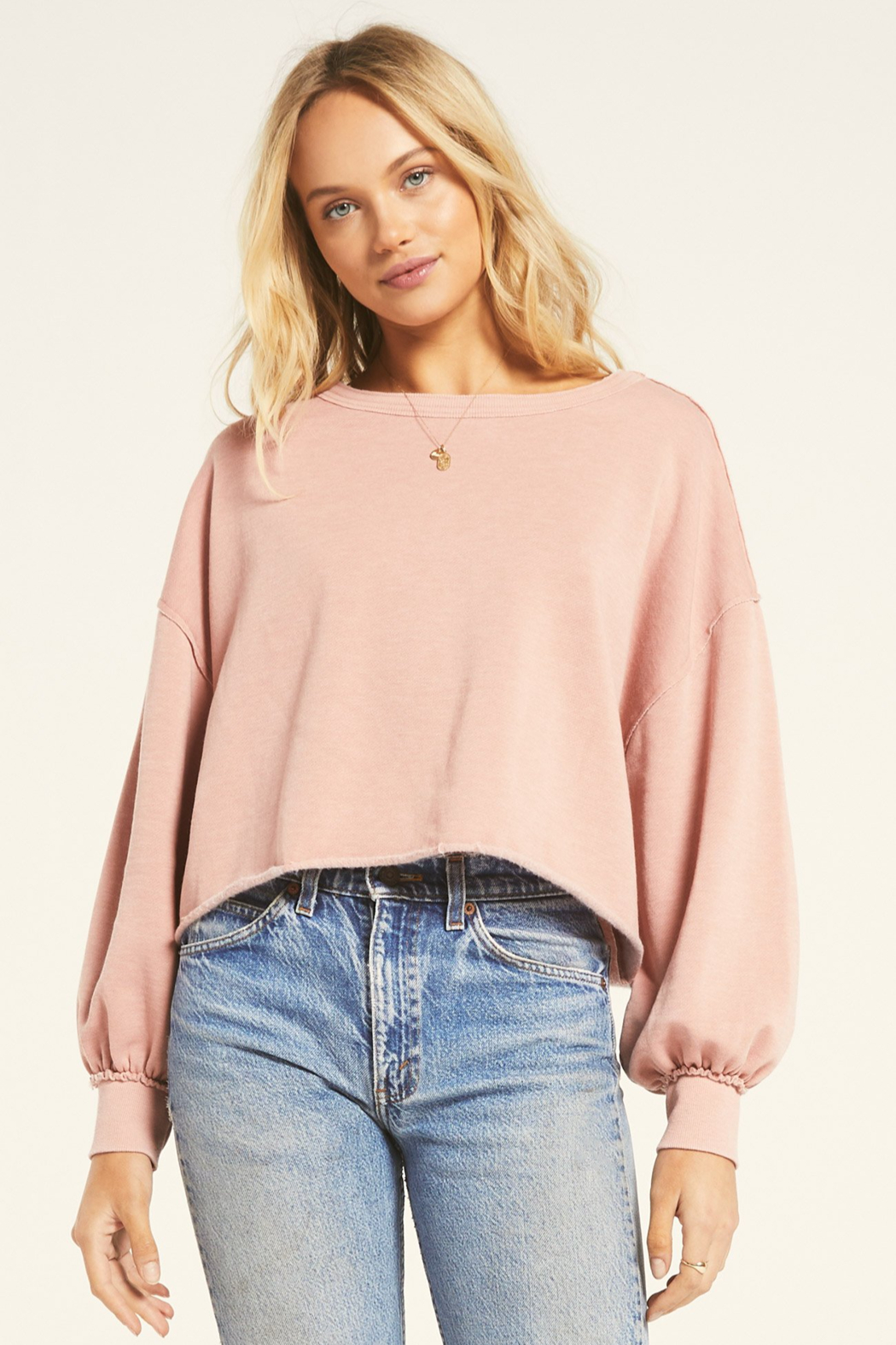 z supply Tempest Sweatshirt - Front Cropped Image