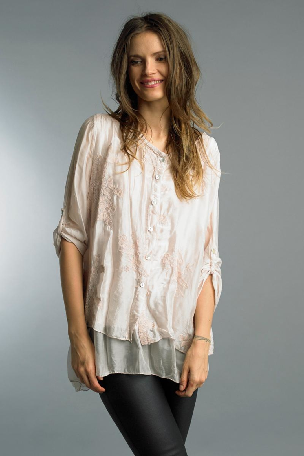 Tempo Paris Embroidered Chiffon Blouse - Front Cropped Image
