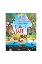 Usborne The Big Picture Book Of Planet Earth - Product Mini Image