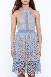 the clothing company Garden Party Dress - Front full body