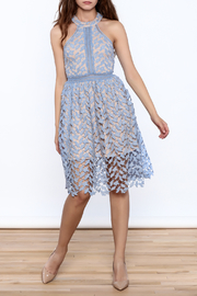 the clothing company Garden Party Dress - Side cropped