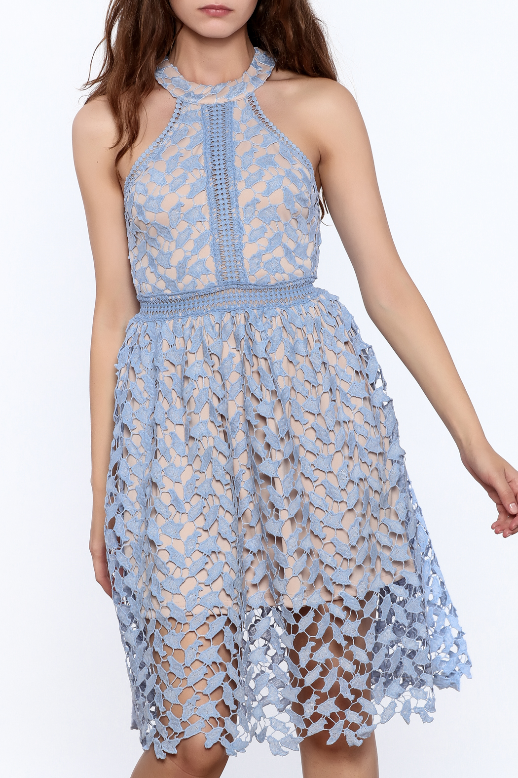 the clothing company Garden Party Dress - Main Image