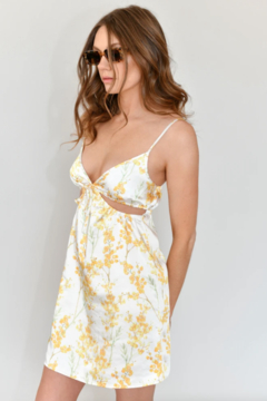 The NOW The Joelle Mini Dress - Product List Image