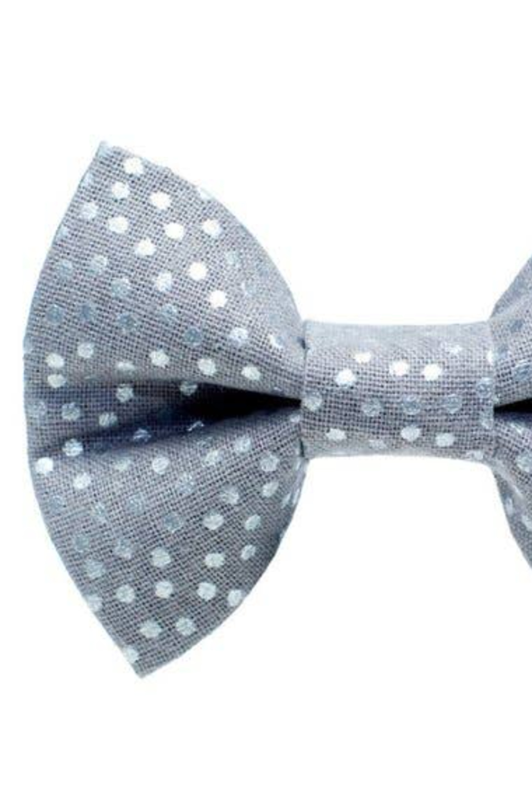 Sweet Pickles Designs The Kittylicous - Cat / Dog Bow Tie - Main Image