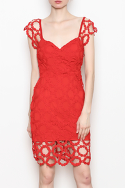 The Sang Crochet Lace Dress - Product Mini Image