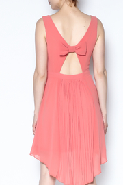 The Vintage Valet Peach Pleated Dress - Back cropped