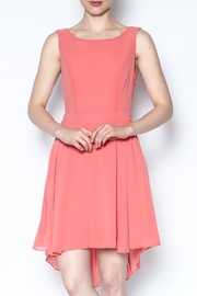 The Vintage Valet Peach Pleated Dress - Front cropped