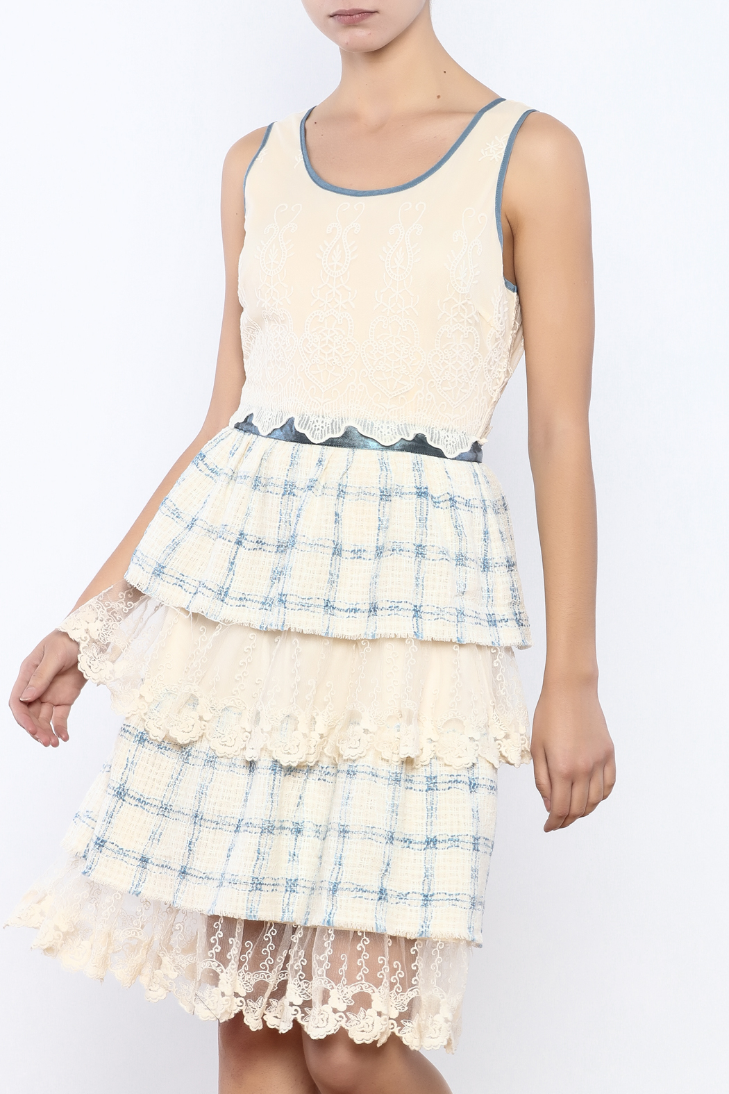 The Vintage Valet Ruffle Lace Dress - Main Image