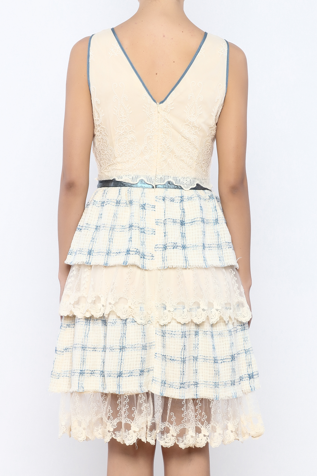 The Vintage Valet Ruffle Lace Dress - Back Cropped Image