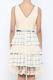 The Vintage Valet Ruffle Lace Dress - Back cropped