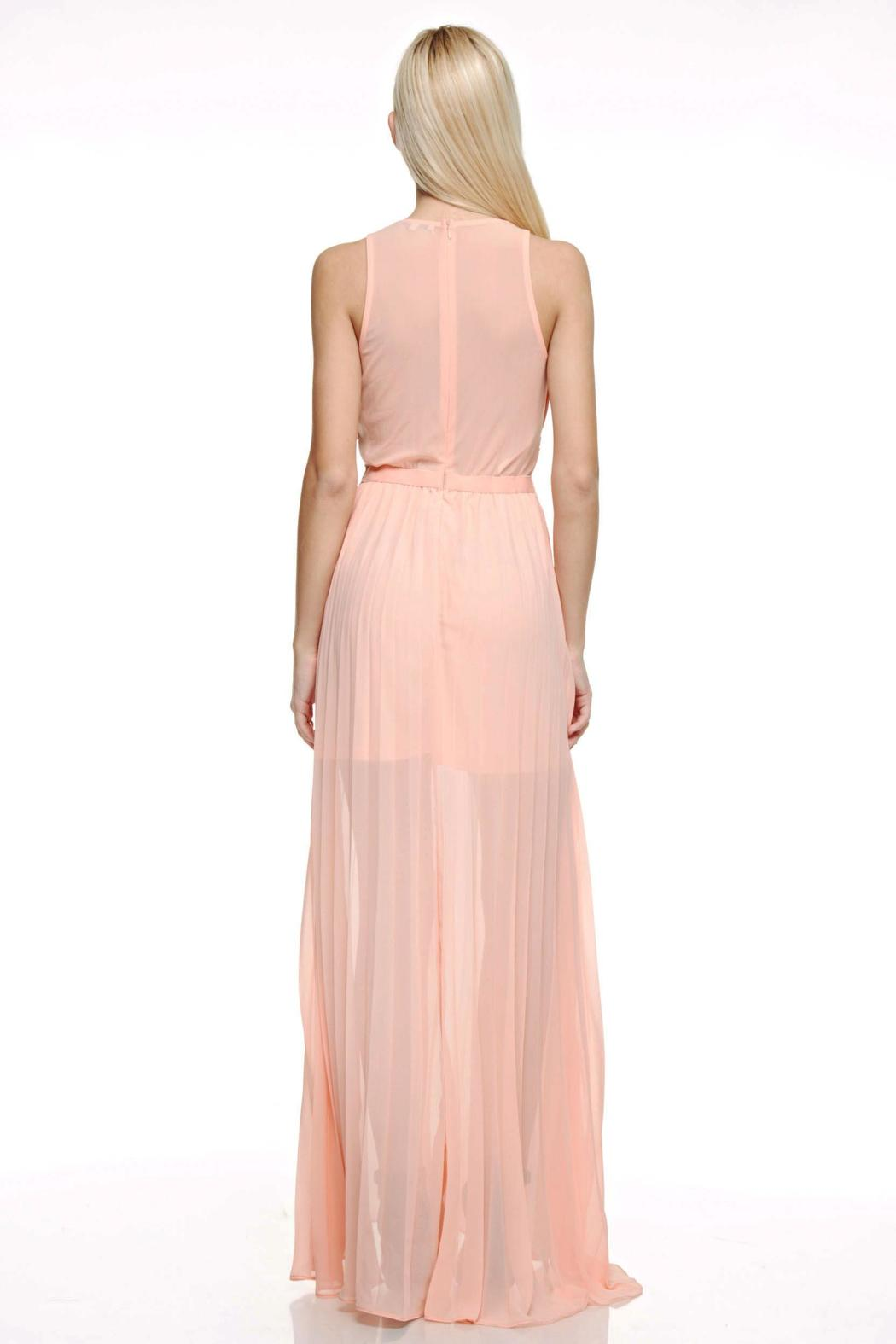 The Clothing Co Embellished Maxi Dress - Side Cropped Image
