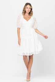 the clothing company Floral Embroidered Midi - Product Mini Image