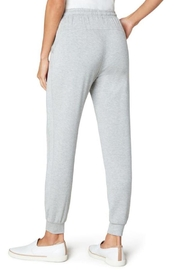 The Dressing Room Soft Drawstring Jogger - Back cropped