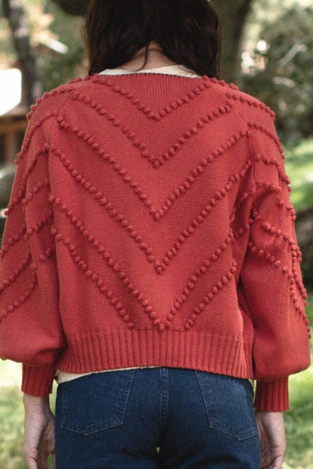 The Great The Meadow Bobble Cardigan - Front Full Image
