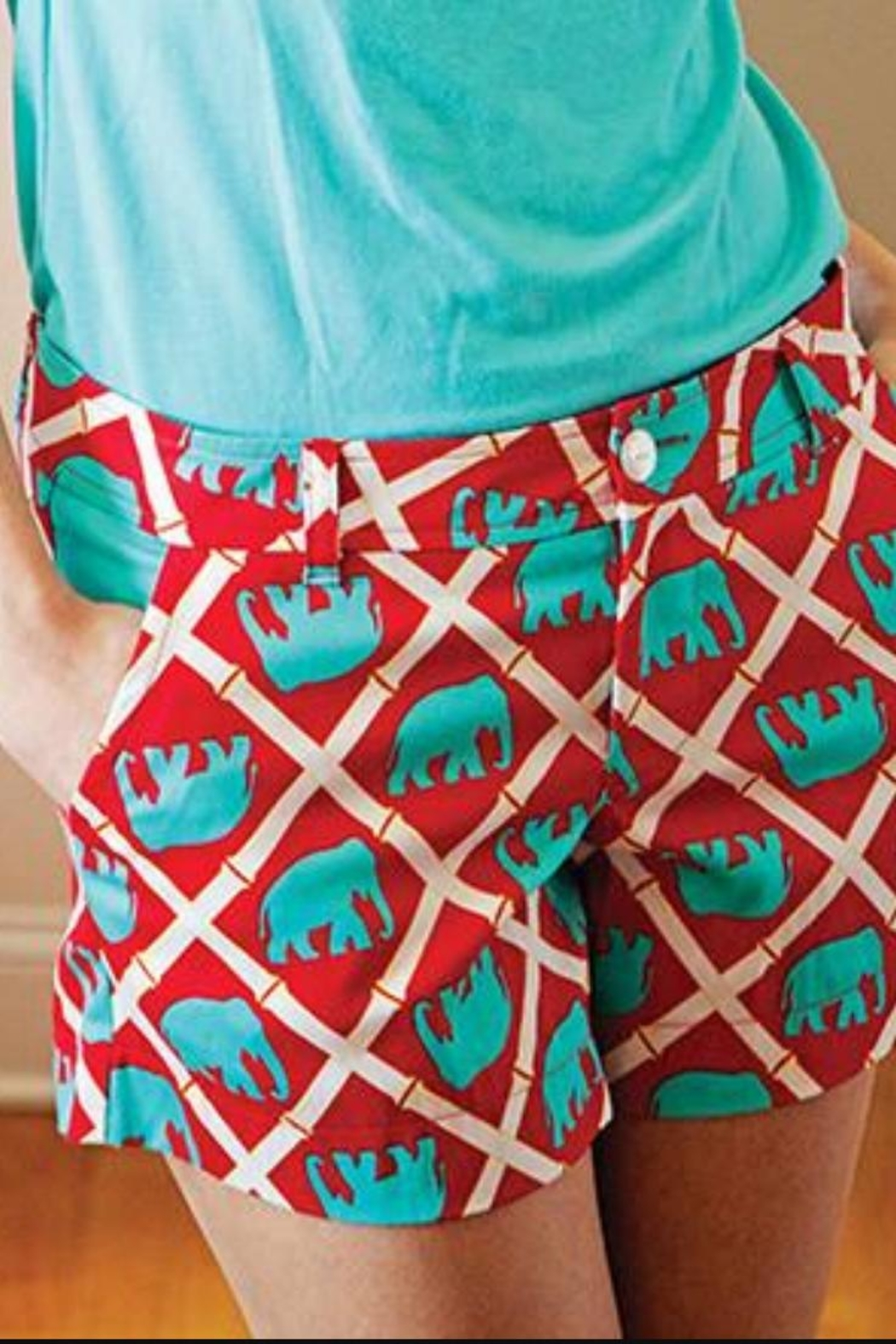 The Haley Boutique Red Bamboo-Elephant Shorts - Front Full Image