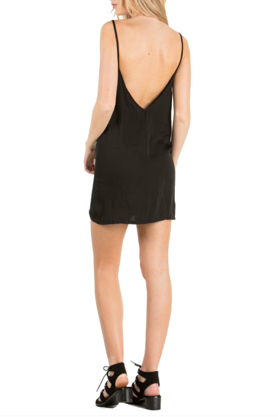 the Hanger Silk Slip Dress - Front Full Image