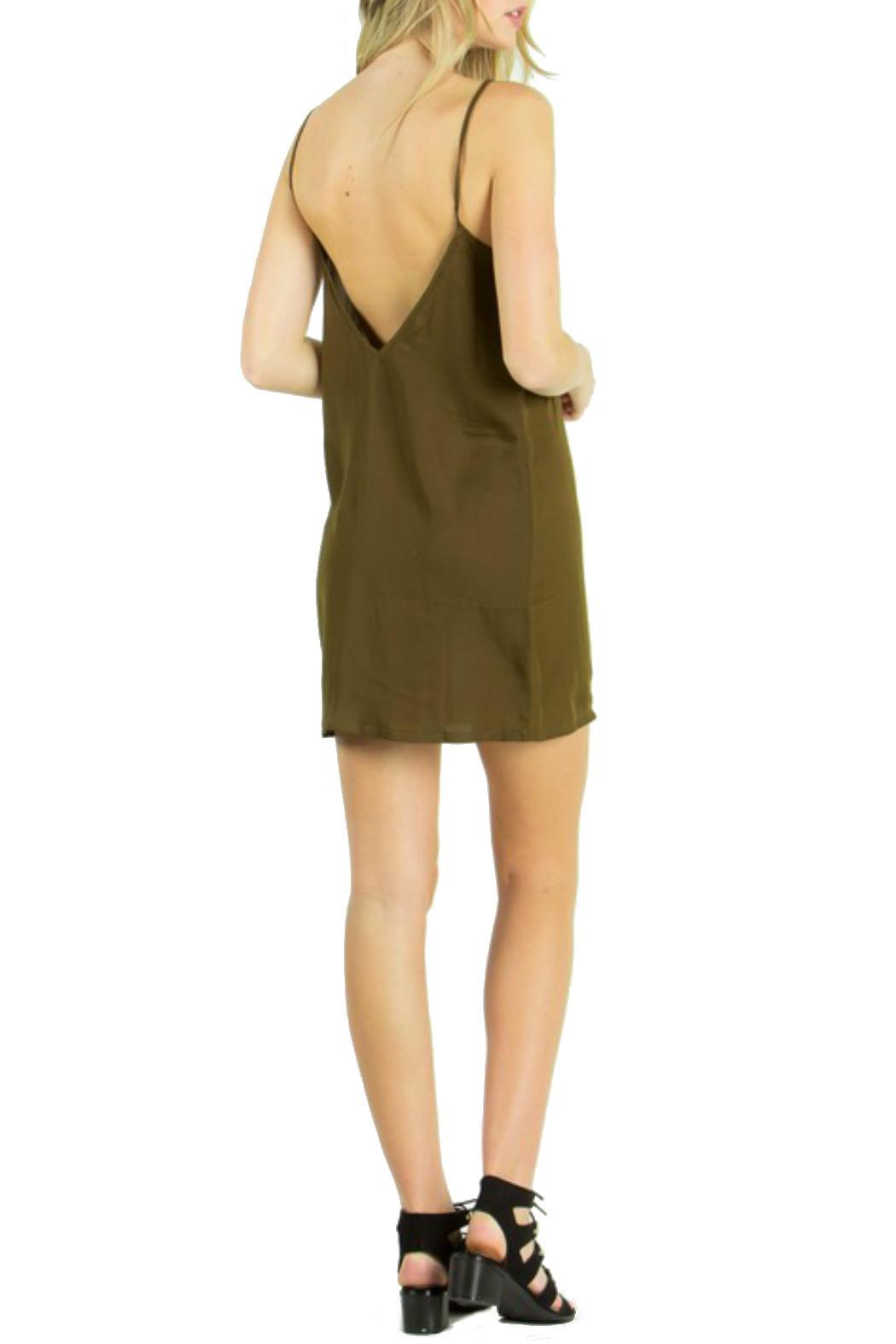 the Hanger Silk Slip Dress - Back Cropped Image