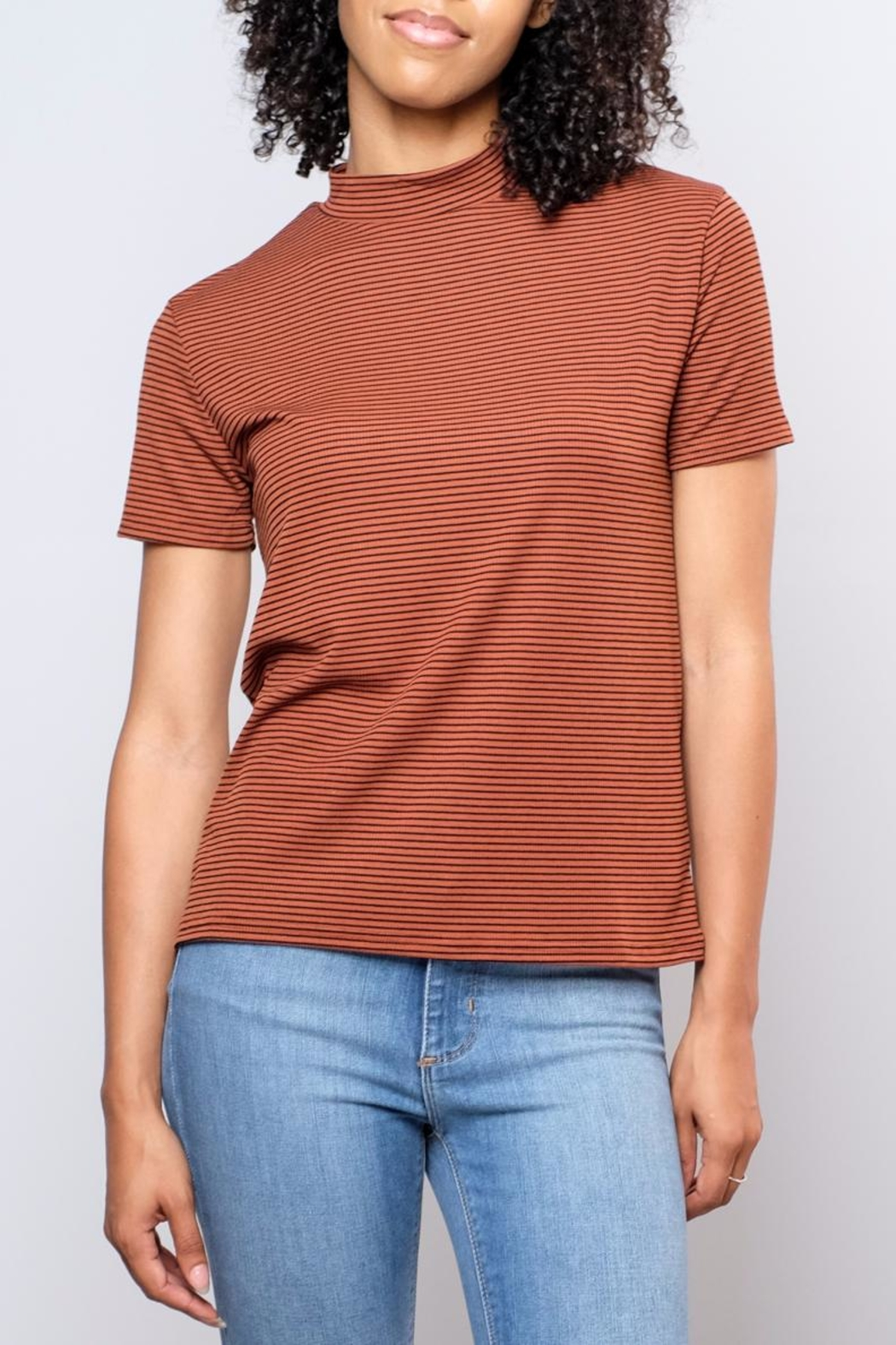 the Hanger Striped Mock Neck Top - Front Cropped Image